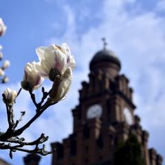 Время Весны...