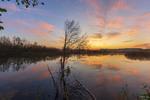 Вартовий світанку