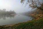 Туманна риболовля