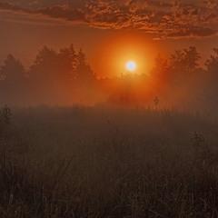 Ранковi барви Малого Устя