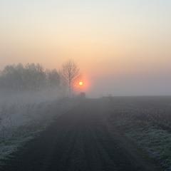 Виринаючи з туману