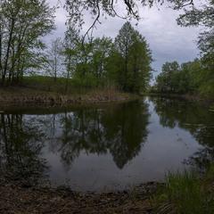 Вечірня тиша на озерці