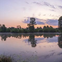 Ранкова тиша водойми