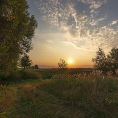 Останнім ранком літа