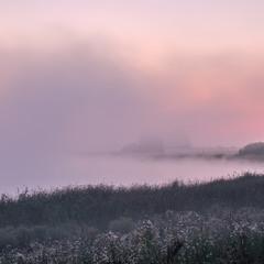 Туманний Глушець