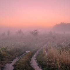 Споглядач туману