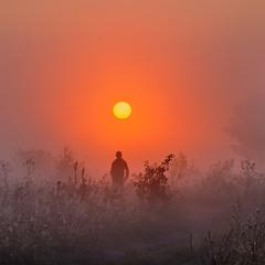 Мисливець за туманами