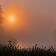 З-за туману сонце вийшло