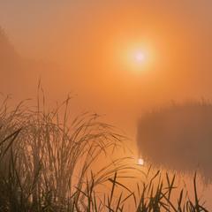 Ранкові відзеркалення