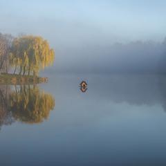 Качиний будиночок пливе в тумані