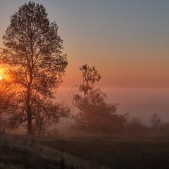 З-за туману сонце приснуло