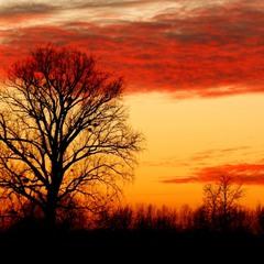 Январский закат