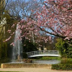 Весны картинки
