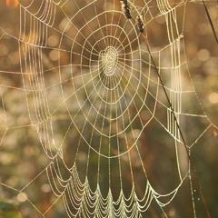 Handmade від павука