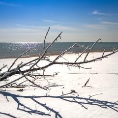 Засніжений берег моря