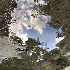Побачити небо в калюжі