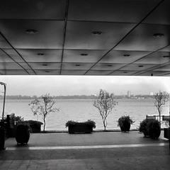 Самотність у великому місті