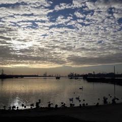 Ранок в порту
