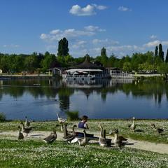 В парку біля озера