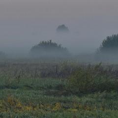Туманний ранок на долині