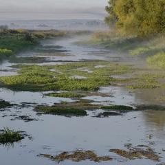 Через річеньку, через болото...