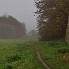 Похмурий ранок і туман