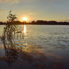 Захід сонця на озері