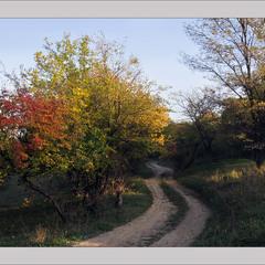 Ще трохи і - осінь :-)