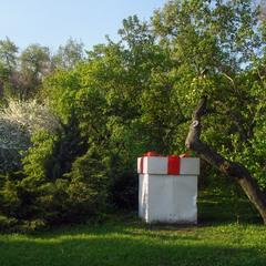 Подарунок для велетня :-) У весняному парку -4.