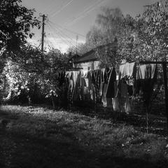 Осенние постирушки - 2