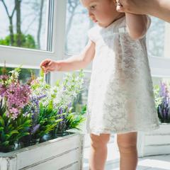 Мамины цветы