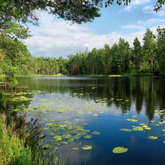 Озёра по дороге в Стокгольм ...