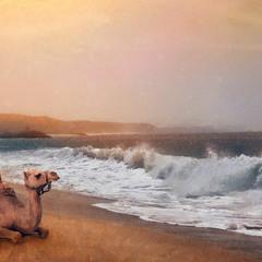 Atlantic Ocean. Воспоминания. Зарисовки.