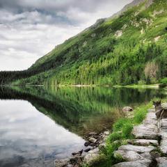 Встреча на озере ...