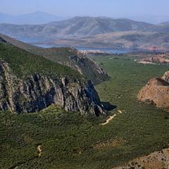 Оливковая долина Фокиды ...