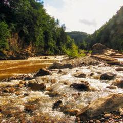 На річці Прут