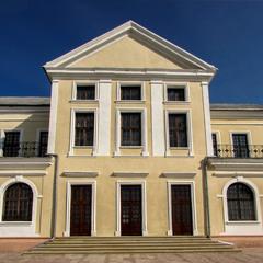 Палац князів Вишневецьких #1