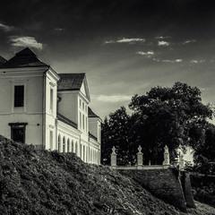 Палац князів Вишневецьких (+фото)