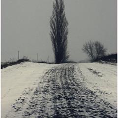Дорога до мого села...