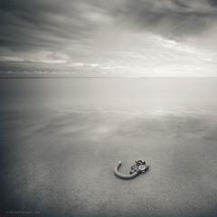 silence of the apocalypse