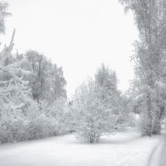 Белый день.