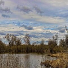 У апрельского пруда.
