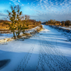 Winter ellipsis ....