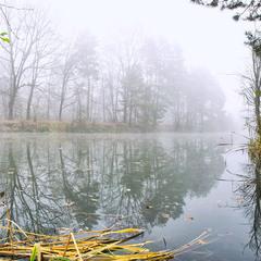 Misty river...