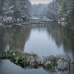 Жизнь подобна медленно текущей реке. Все в ней непостоянно, всё течет, всё меняется, всё исчезает.