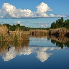 Рибалка на дзеркального коропа)