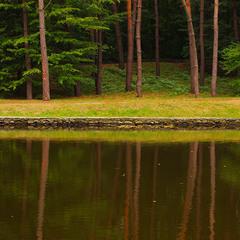 Осенним утром у пруда деревья в зеркало смотрели...)