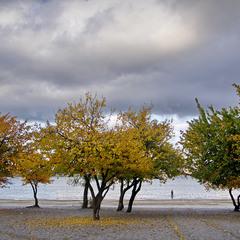 На берегу Осени