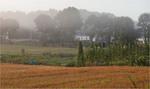 огород рано вранці