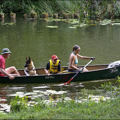 троє в човні і собака